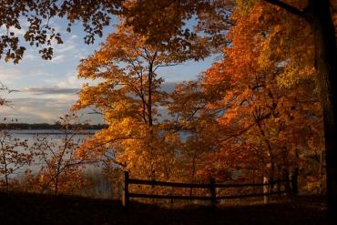 lake_carlos_145